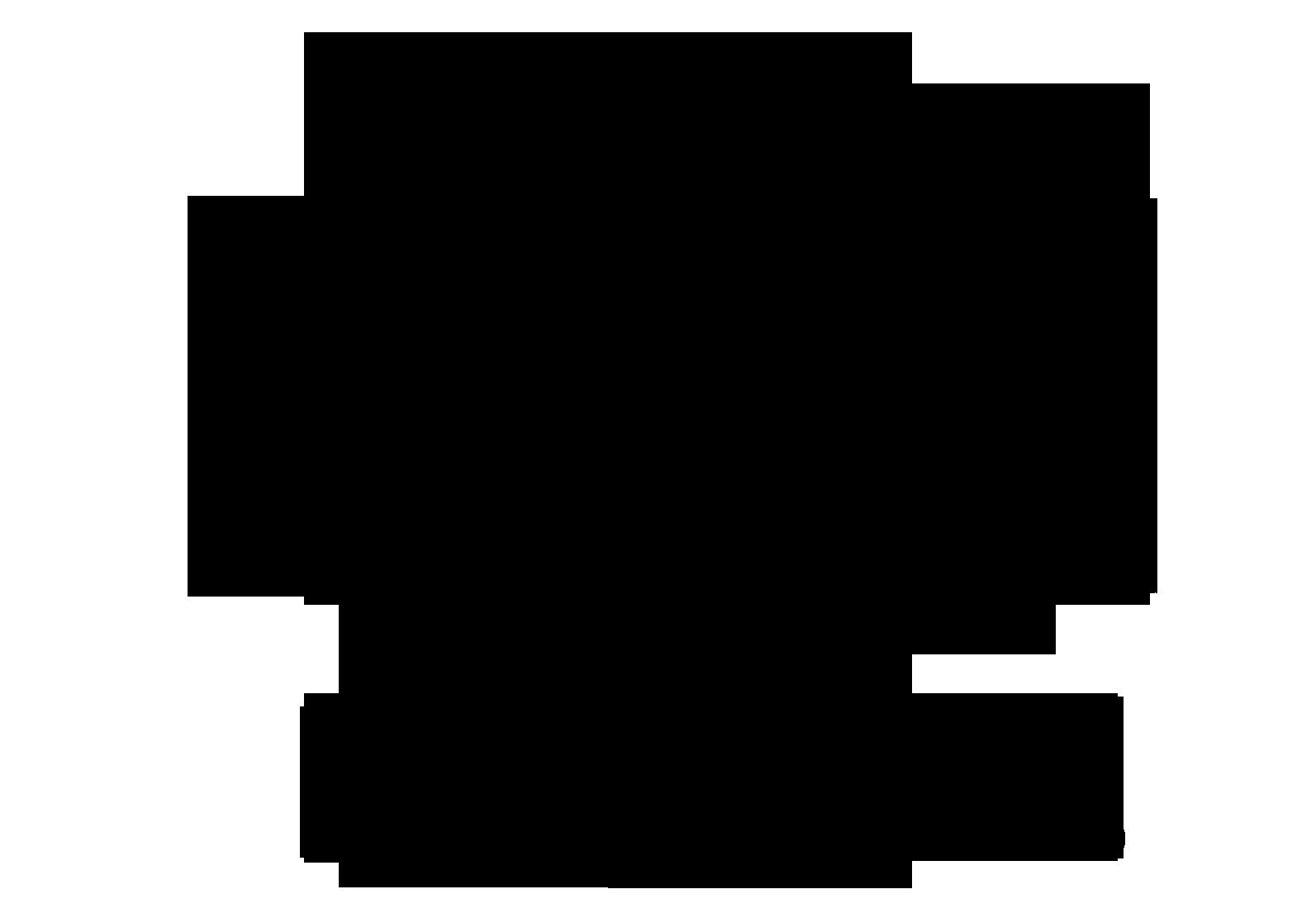 GYMNASIUM BECOMES OFFICIALLY A GYMNASIUM AGAIN